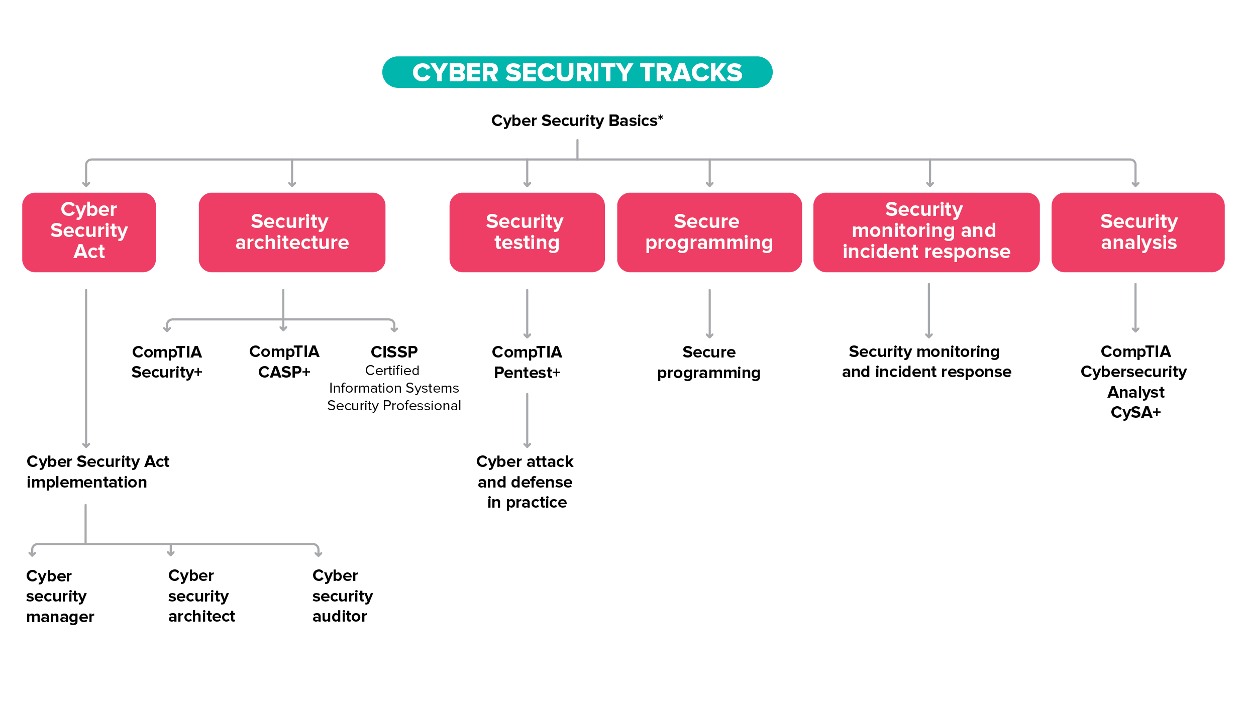 cyber security tracks
